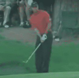 Tiger Woods executes his golf chipping by picking a spot  to land his chip shot
